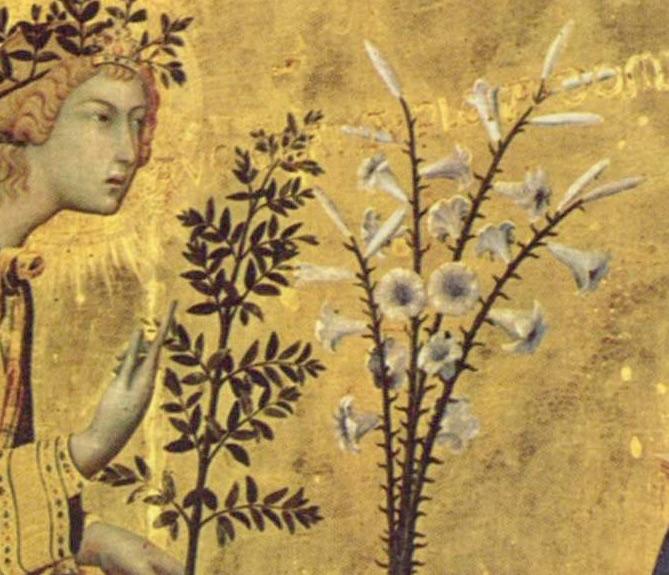 写実的な植物の描写の例の画像