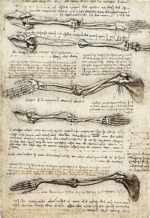 レオナルド・ダ・ヴィンチの手稿の画像1